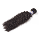 Free sample afro kinky human hair for braiding,wholesale different types of curly weave hair,cheap weave hair online
