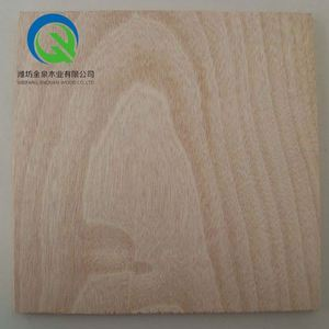 18mm veneer commercial poplar core film faced Sanded Plywood