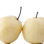 Export Chinese Crystal Pear for import