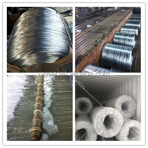 Steel Wire for Brush
