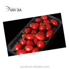 PP clear plastic fruit & vegetable tray V17 customized