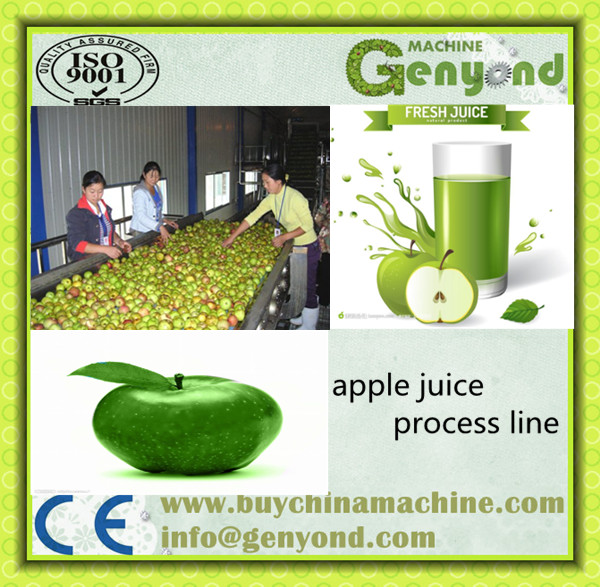 Tomato Juice Production Line/apple Juice Production Line