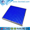 Amazon top seller 2016 newst 255pcs Blue SMD2835 chip LED plant growing panel