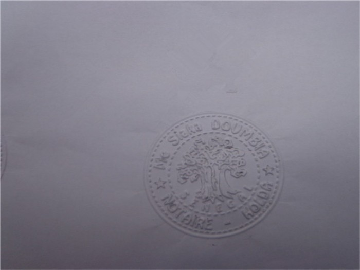 Best quality custom design embossing stamp /common seal for office use