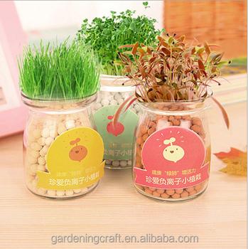belle mini anion verre bonsa planteur intrieur hydroponique crotre kit