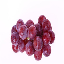 Competitve price for Grape seed extract OPC 95% grape procyanidins