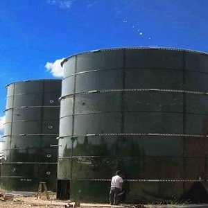High technology of anaerobic biogas digester for Food waste plant