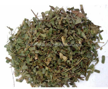 Abrus Herb From Abrus Cantoniensis Hance Dried Whole Partsherb