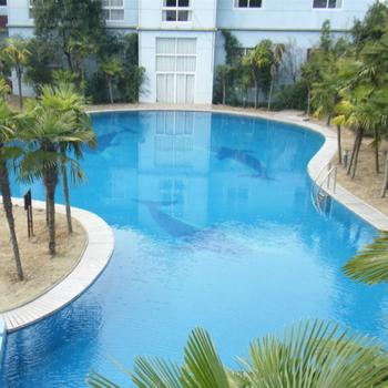 Caboli Epoxy Waterproof Swimming Pool Paint - Buy Epoxy Swimming Pool  Paint,Wall Paint,Bathroom Paint Product on Alibaba.com
