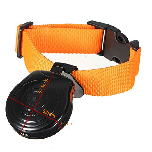 Exclusive Product Hunting Dog Camera with Digtal Button
