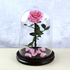 Sweet Pink preserved rose in glass dome