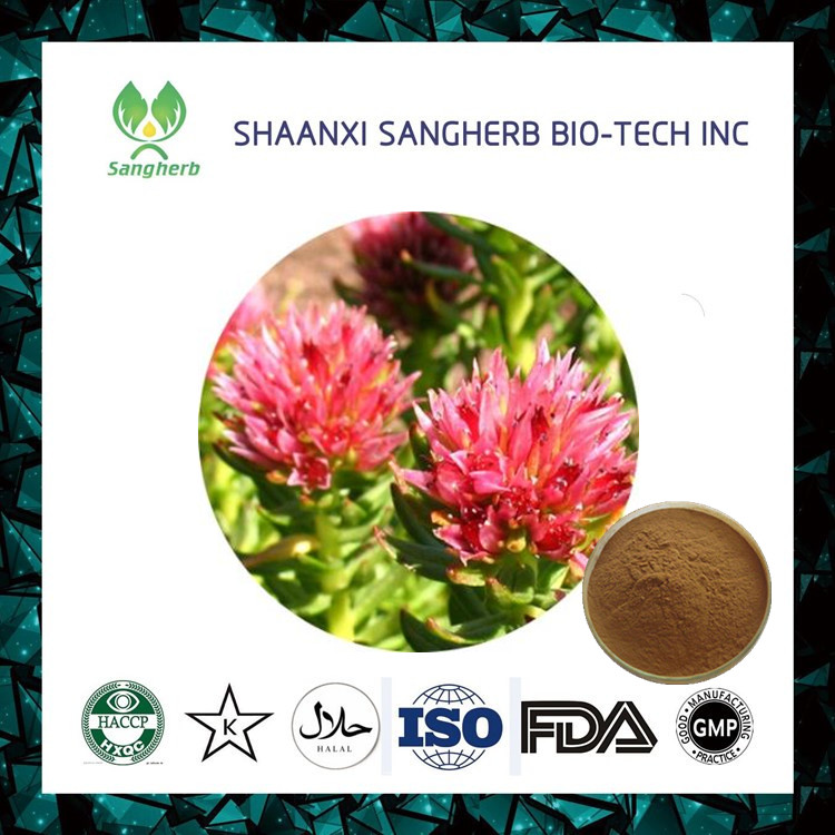 New product 2017 organic rhodiola rosea ext / salidroside of CE and ISO9001 standard