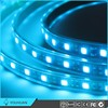 High - End RGB FPC Decoractive Lamp Ip65 12V LED Strip light for camp