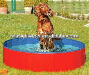 Dog Swimming Pool Buy Dog Swimming Pool Pet Shower Pool Dog Pool Product On
