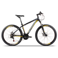 LOWEST Price MTB! Chinese high quality MTB 21 speed alloy mountain bike for sale!