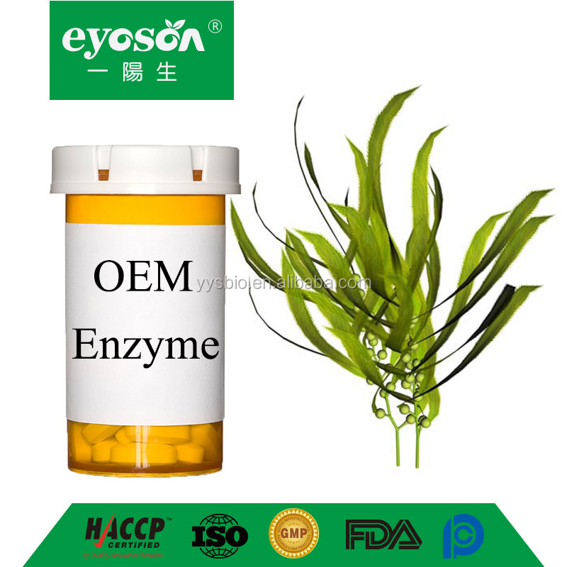 Eyoson OEM Kelp Seagrass enzyme Natural Supplement for Stress and Anxiety Relief