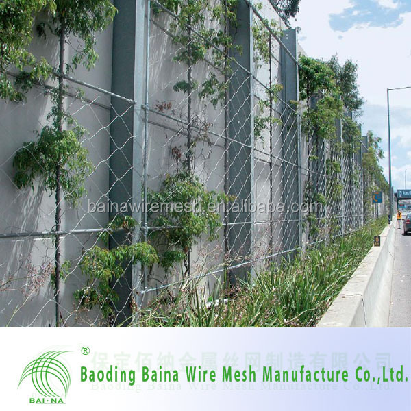 Stainless steel wire rope mesh net for green plant wall