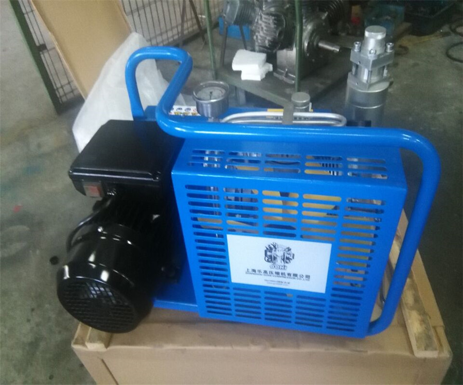 100L/Min 300 Bar Breathing Oil Free Air Compressor for sale