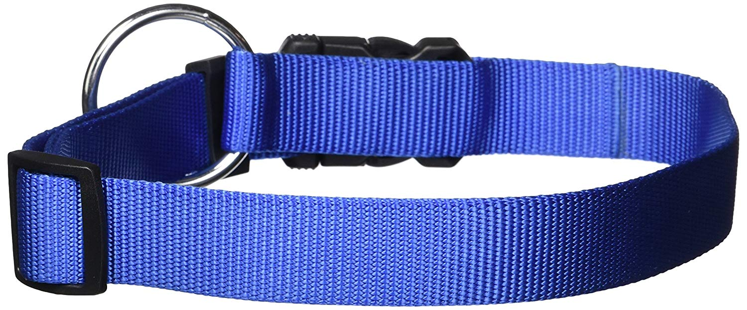 Dogit Nylon Adjustable Single Ply Dog Collar with Plastic Snap, X-Large, 1-Inch, Blue