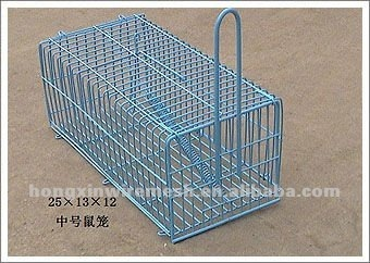 Galvanized Pvc Coated Catching Rat Cages Factory Buy
