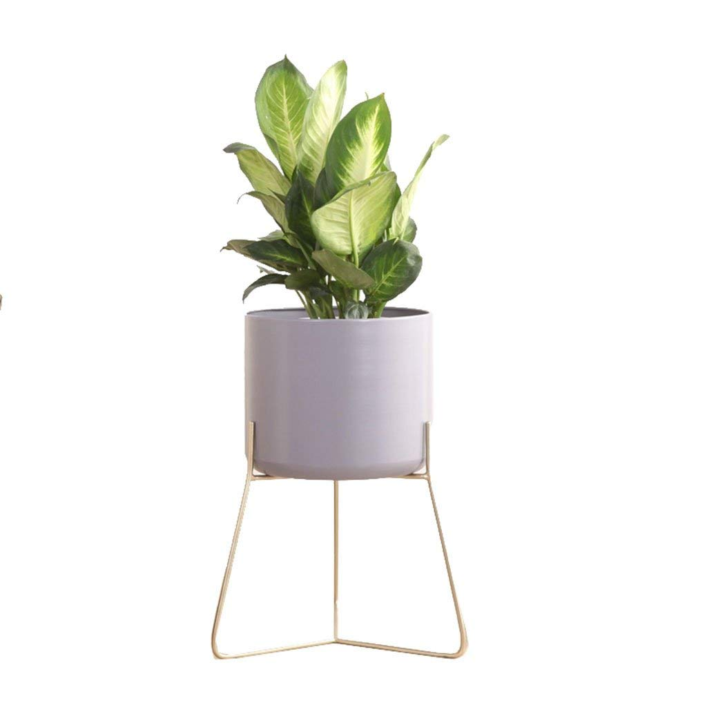 CSQ Wrought Iron Flower Stand, Gold Bracket Color Flower Pot Creative Plant Stand Bedroom Living Room Office Study Balcony 2 Sizes Flower Shelf