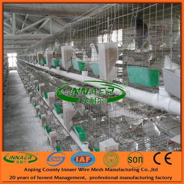 3 Tiers 4 Door Racing Pigeon Cage - Buy Racing Pigeon CagePigeon Breeding CagePigeon Feeding Cage Product on Alibaba.com & 3 Tiers 4 Door Racing Pigeon Cage - Buy Racing Pigeon CagePigeon ... Pezcame.Com