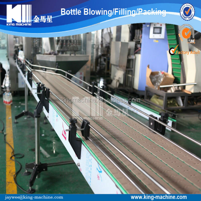 Flat Conveyor / Plane Conveyor /Chain Conveyor