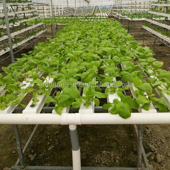 China System Aquaponics Pvc Pipe For Hydroponics Vertical Garden - on 2 liter bottle vertical garden, pvc vertical gardening for tomatoes, rebar vertical garden, pvc pipe garden watering, vertical earth garden, pvc pipe garden fence, a frame pvc pipe garden, pvc pipe in garden, idea outdoor planter vertical garden, pvc tube garden, pvc pipe garden tower, grow all vertical garden, pvc vegetable garden, copper vertical garden, wood vertical garden, homemade vertical garden, pvc pipe garden hoops, create a vertical garden, pvc pipe veg garden, pvc pipe herb garden,