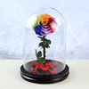 Rainbow Preserved Rose In Glass Dome