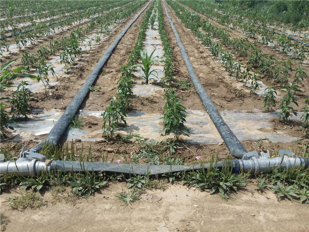 1 Inch 3 Inch 6 Inch Farm Sprinkler Irrigation Plastic
