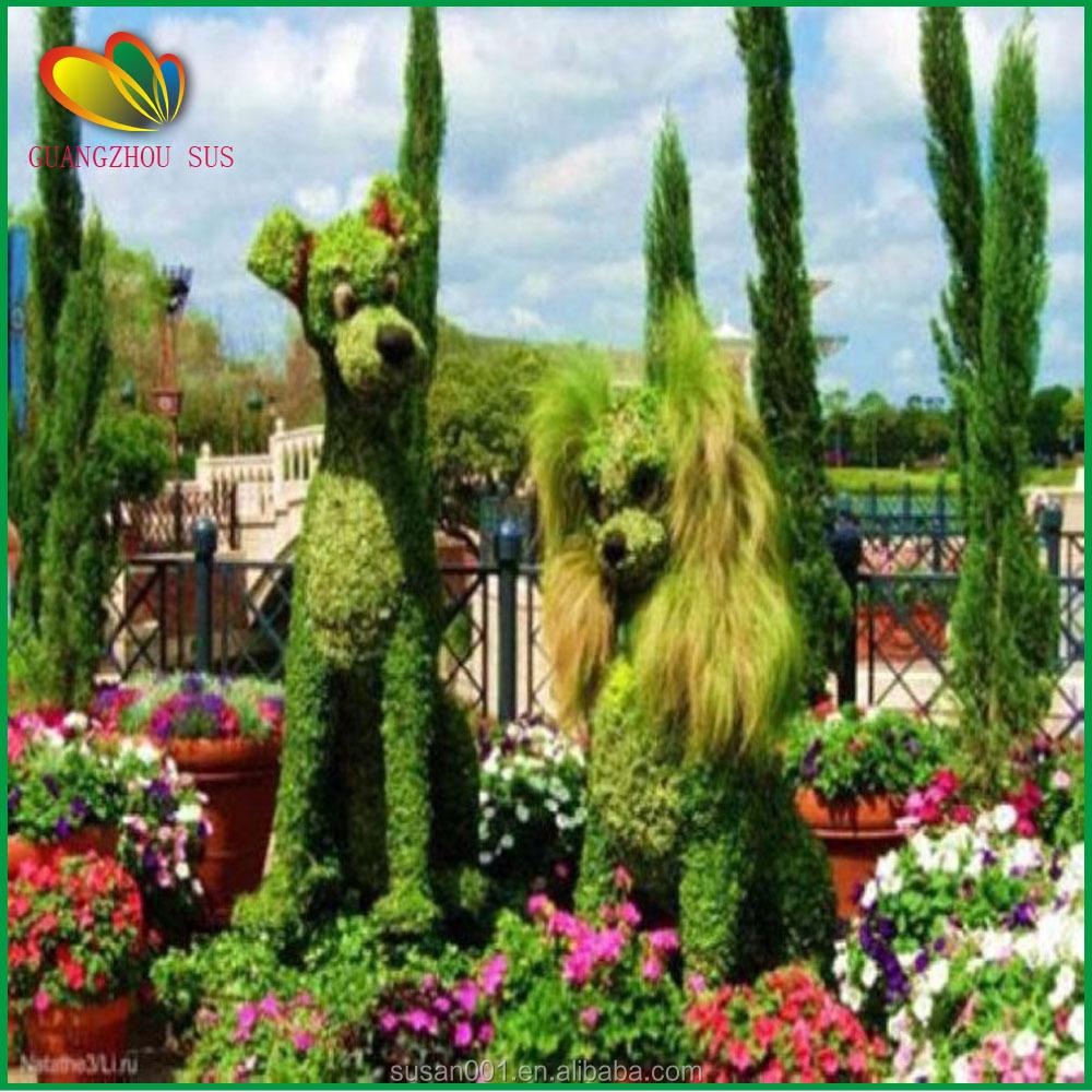 Erba per giardino e decorare il giardino per natale - Erba nana per giardino ...