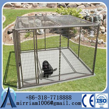 steel large dog cage lock from China Supplier /big dog cage