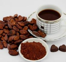 Strong Concentration Natural Cocoa Extract Flavour , high quality essence for Confectionery Icecream Milk and Bakery