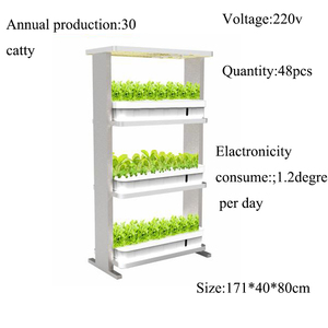 2018 Indoor Home hydroponic growing systems AC85-265V 250W 3 layers vertical hydroponic system kit for leafy plants lettuce