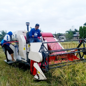 Small Rice Harvest Machine for Sale
