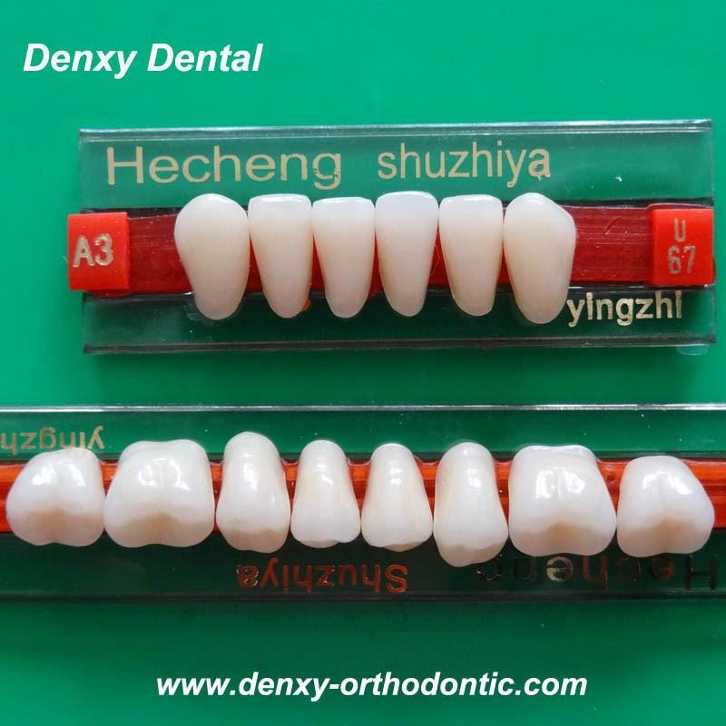 Dental Manufacturer Supplies Composite Denture Teeth Acrylic Teeth ...