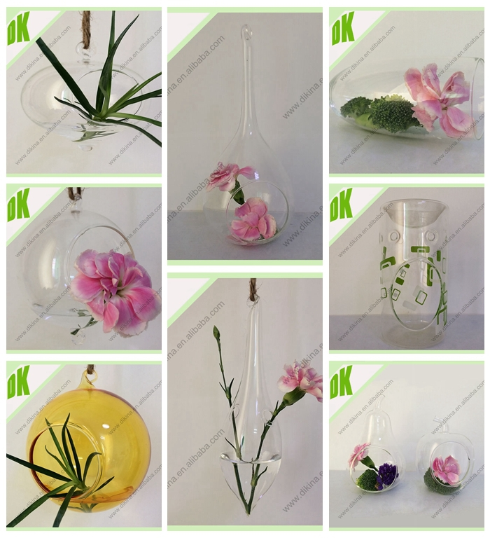 Glass Jar Plant Terrarium Air Plant Clear Orb Terrarium Hanging