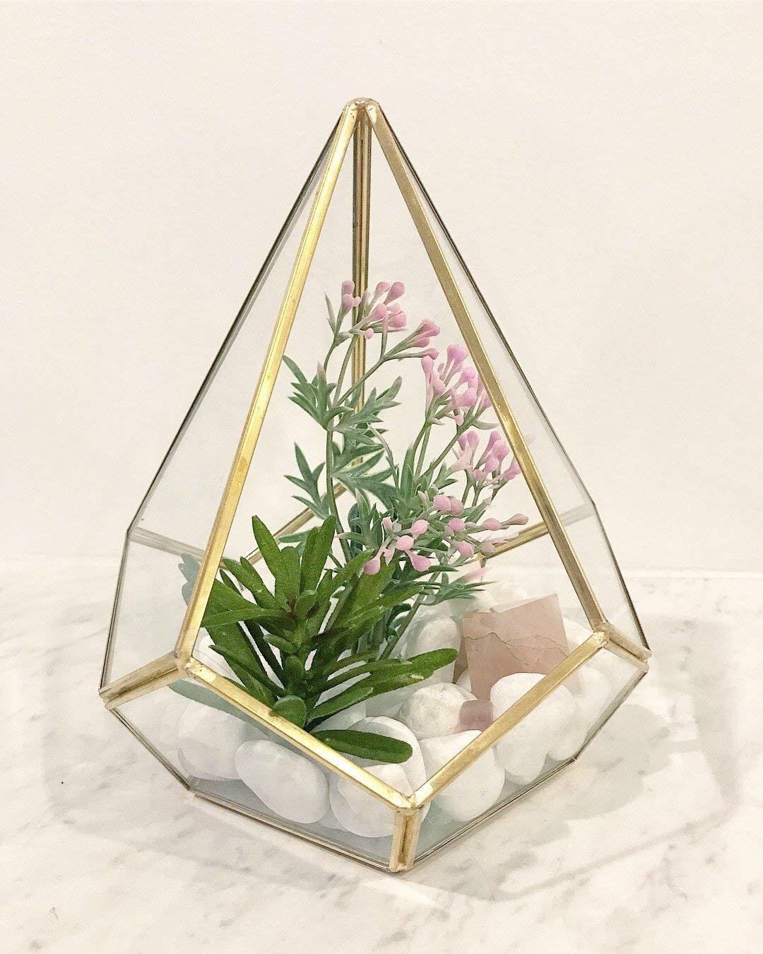 Cheap Succulent Terrarium Find Succulent Terrarium Deals On Line At Alibaba Com