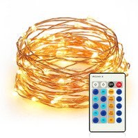 invisible 33ft 100 LEDs Fairy String Lights with Remote Control Dimmable led mini copper wire string lights Rope Lights
