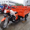 china 200cc trike chopper