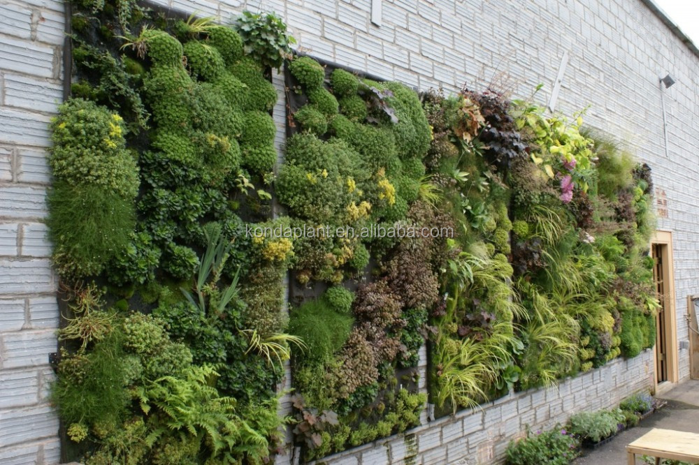 China artificial grass wall factory wholesale artificial for Outdoor wall coverings garden
