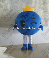 NO.4306 new blueberry mascot costumes
