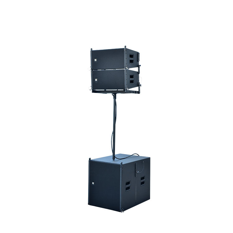Pro Active Line Array Pa System Audio Speaker (LA110)