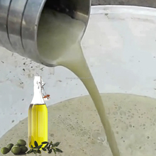 Olive oil cold extraction press machine/olive oil cold press machine