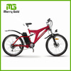 comfortable electric e-bike bike 6-speed derailleur electric bicycle 36v 250w lithium battery e-tricycle FLY DRAGON