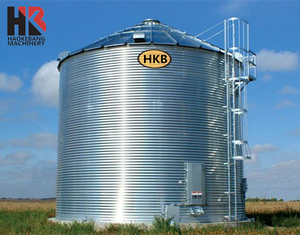 Alibaba Gold Supplier 500/1000/10000 Tons Paddy Rice Grain Storage Silo For Farm