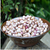Non-gmo Black Soybean With High Protein - Buy Black Soybean,Non ...
