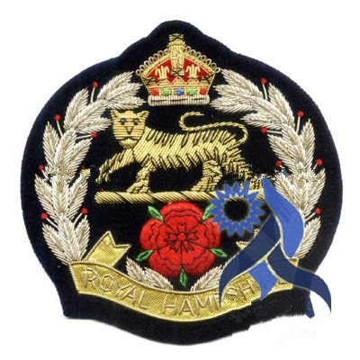 Bullion wire embroidery military hand badges---SH0090