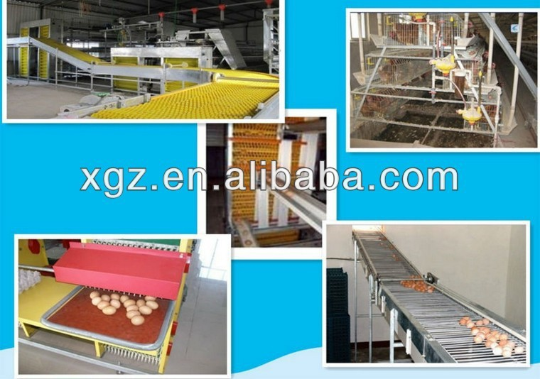 design layer poultry cage for kenya farm for sale