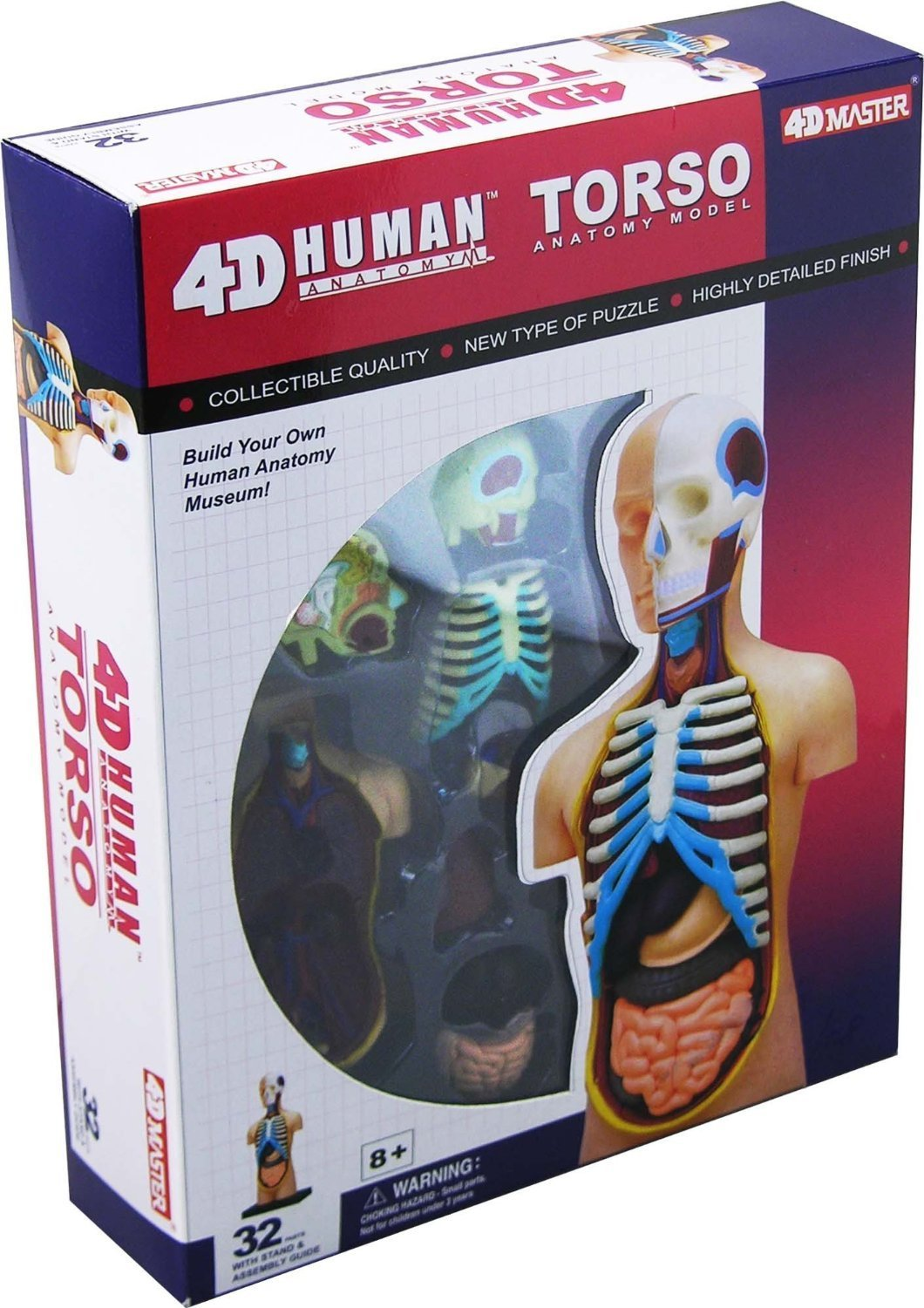Cheap 3 D Human Anatomy, find 3 D Human Anatomy deals on line at ...